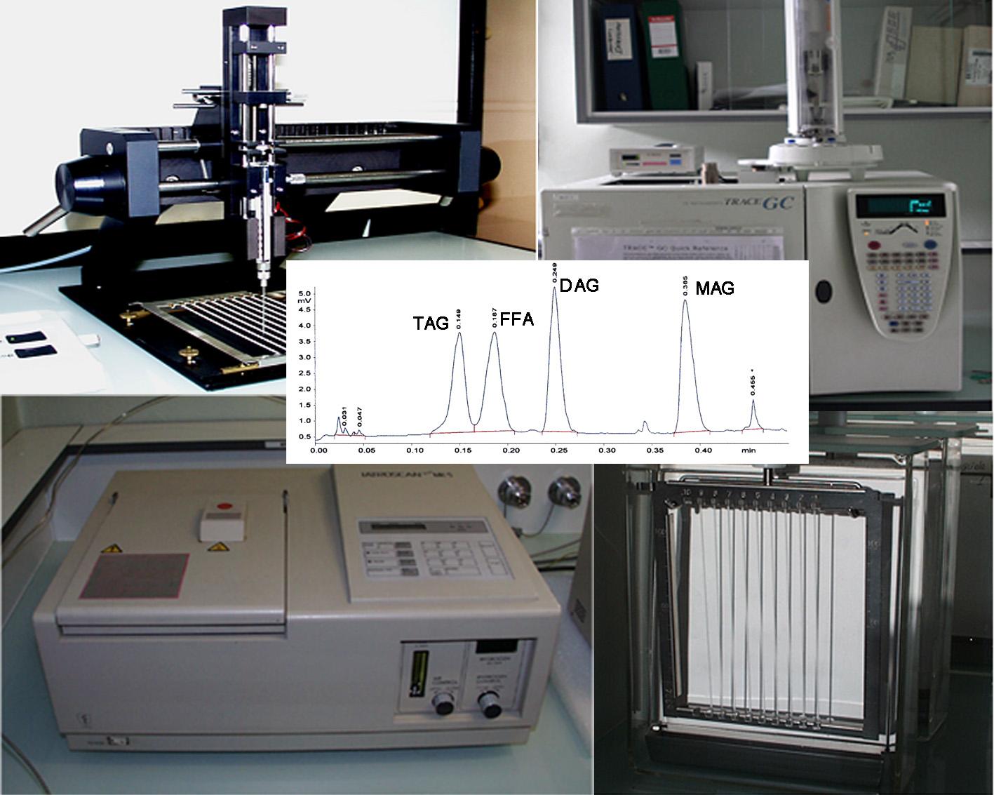 illustrerles compétences techniques du BIP2 en analyse des lipides