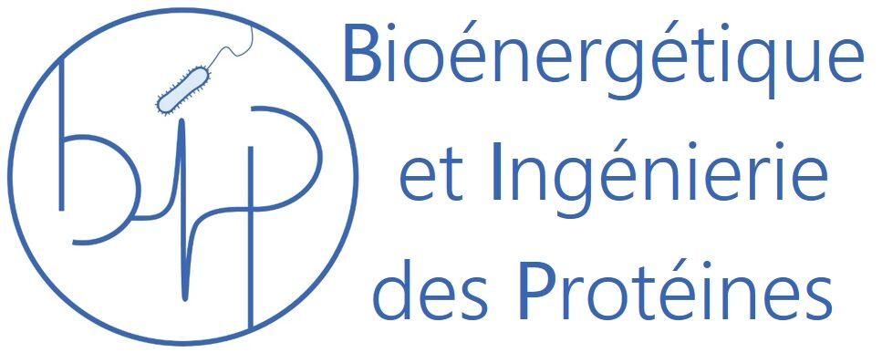 Bioénergétique et Ingénierie des Protéines (BIP)