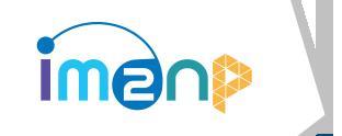 imn2np_logo